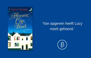 Recensie: Cally Taylor - Heaven can wait