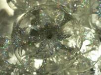 2008-11-10-p1090592