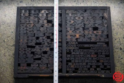 Assorted Letterpress Wood Type - 022120013315