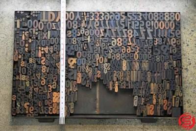 Assorted Letterpress Wood Type - 022120100415