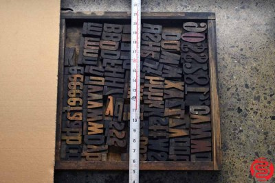 Assorted Letterpress Wood Type - 022120105325