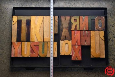 Assorted Letterpress Wood Type - 022420072310