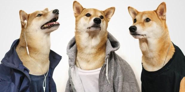 menswear-dog-gym-outfits-1105603-TwoByOne