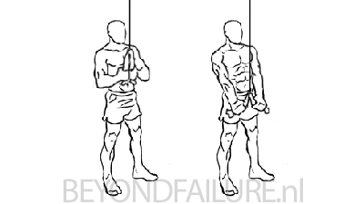 triceps-rope-pushdown