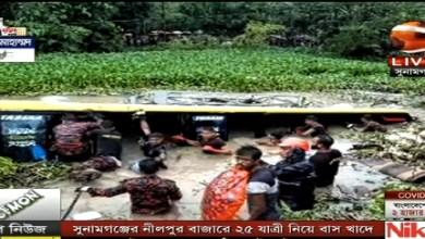 Photo of সুনামগঞ্জের নীলপুল বাজার এলাকায় ২৫ যাত্রী নিয়ে বাস খালে