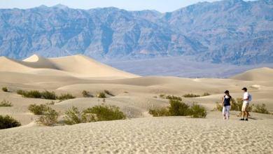 Photo of ১০০ বছরের ইতিহাসে সর্বোচ্চ তাপমাত্রা দেখলো বিশ্ববাসী