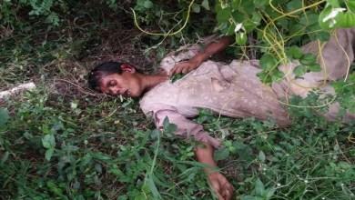 Photo of বগুড়ায় ট্রেনে কাটা পড়ে নারীর মৃত্যু