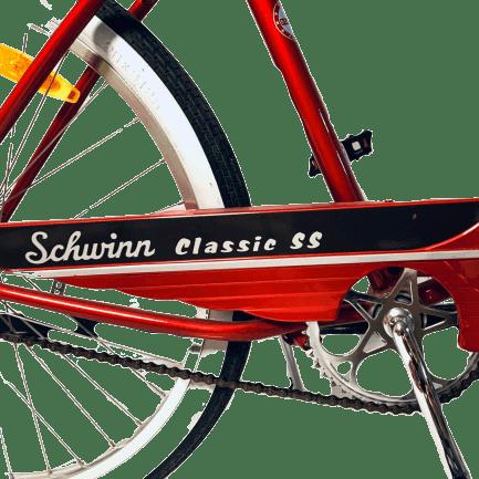 bicicletta-americana-schwimm
