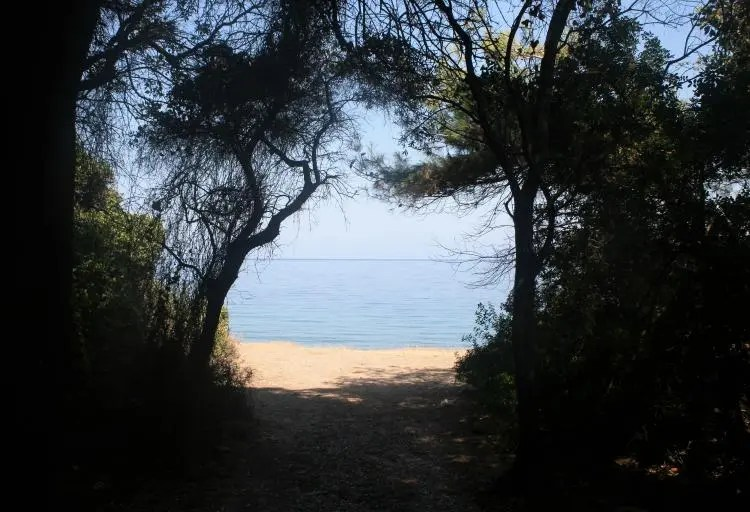 Milli Park Dilek Yarimadasi