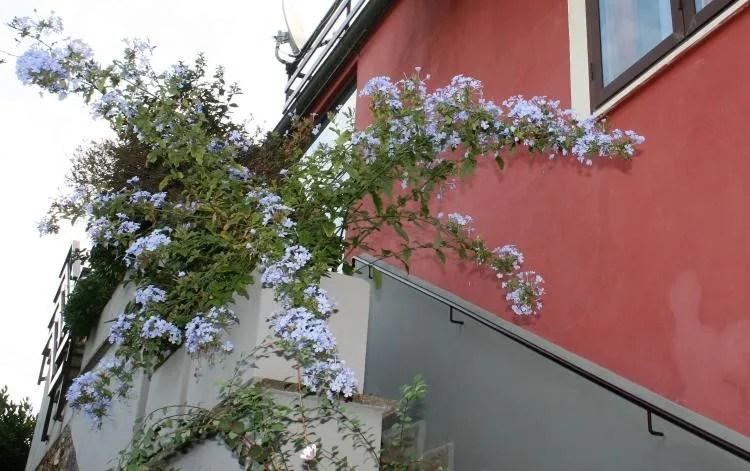 Typisch Italiaans verblijf bij Bed & Breakfast Villa degli Olmi in Allumiere