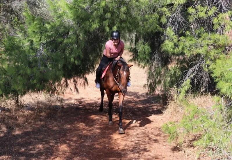 Agistri Horse Riding