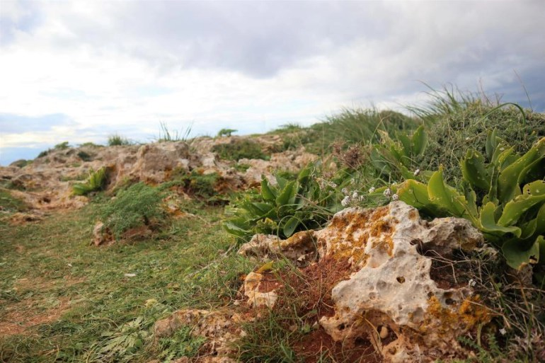 De Dingli Cliffs in Malta