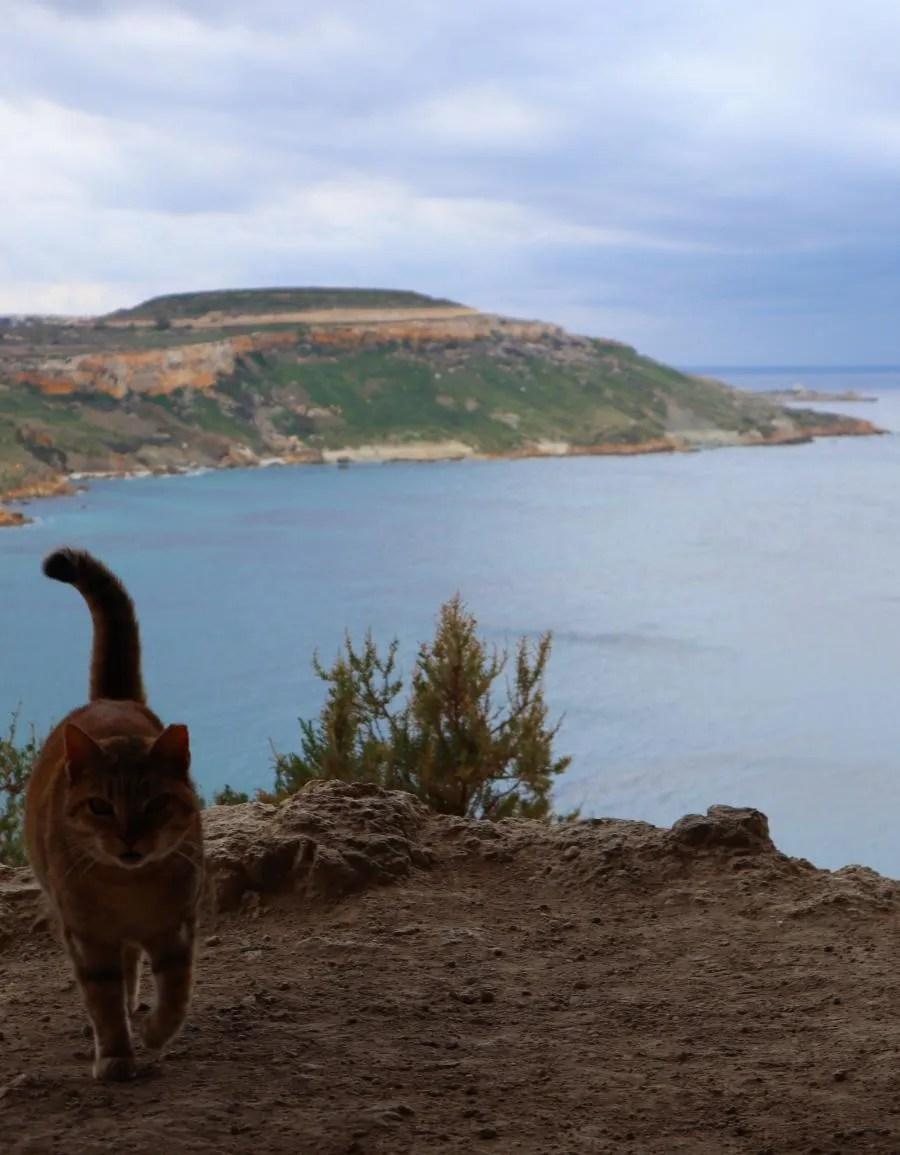 Uitzicht op Gozo