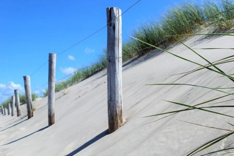 Wandelen in de duinen van Petten aan Zee