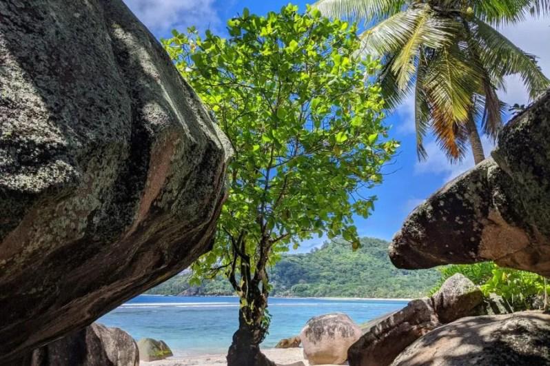 Ecologisch eiland Félicité, Sychellen
