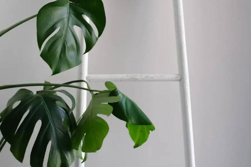Verduurzaam je interieur met deze tips
