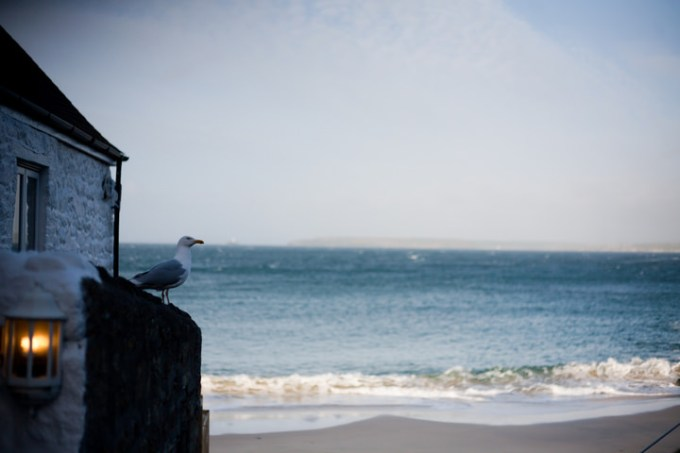 31 Quaint St.Ives Wedding With A Subtle Coastal Theme