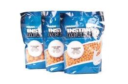Nash Instant Action Boilies 1kg 20mm Tandoori Spice + 5 Gratis Pop Ups Boilies Boilie Karpfenköder - 1