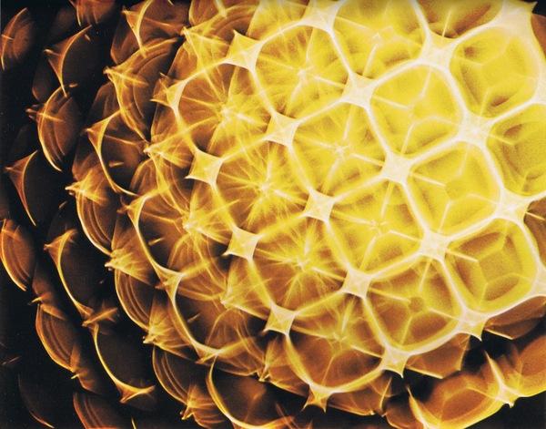 cymatics-turpentine.jpg