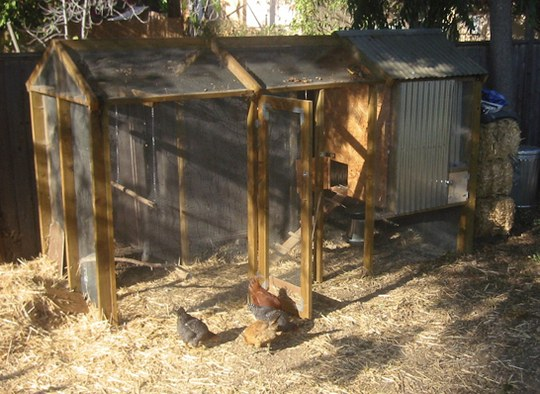 How To Build A Backyard Chicken Coop Boing Boing