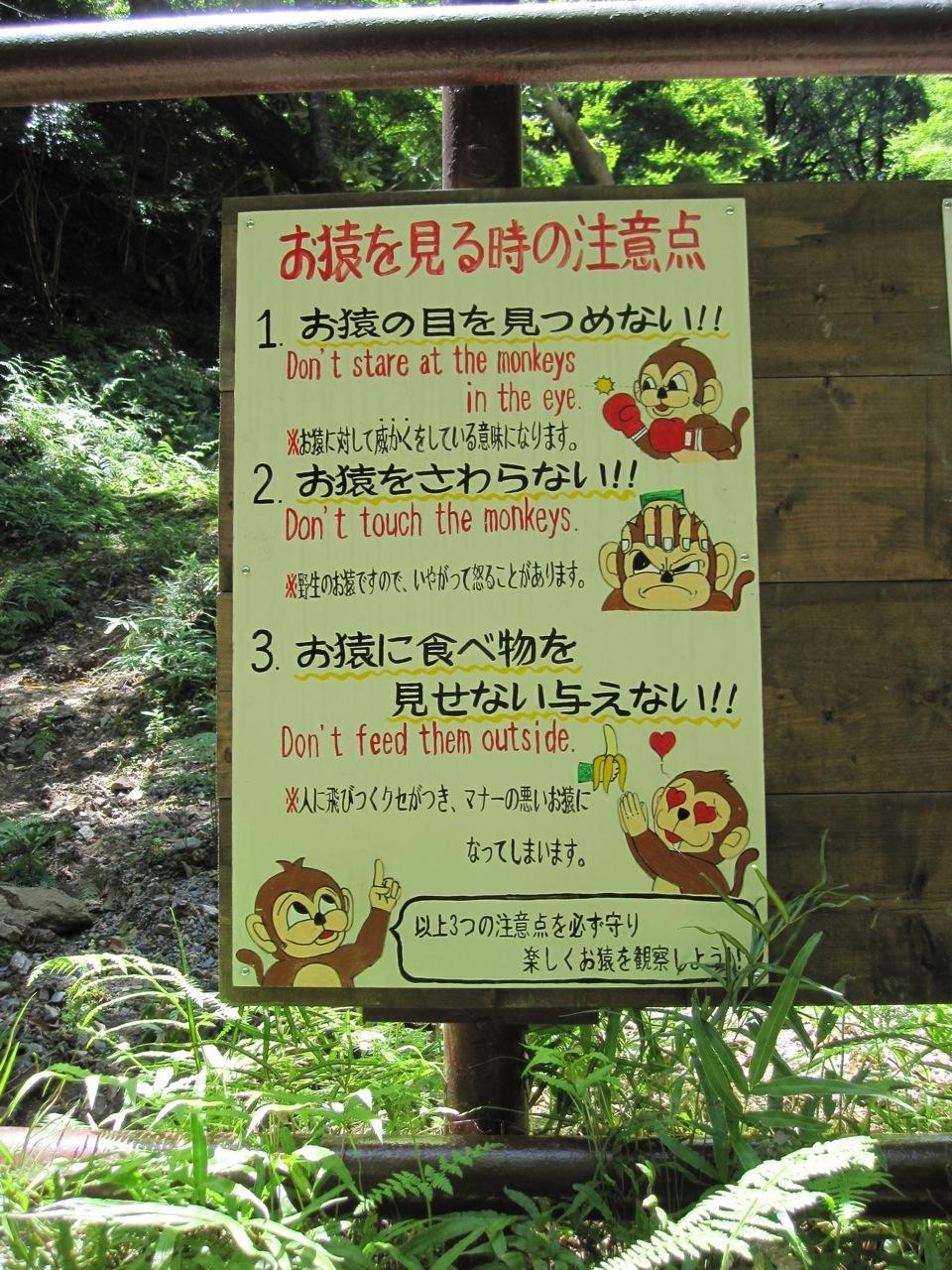 how to go to arashiyama monkey park