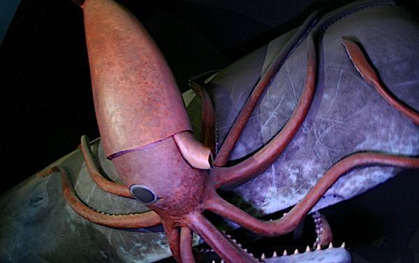 squidwardsrevenge.jpg