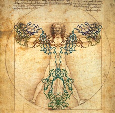 Angel Vitruvian