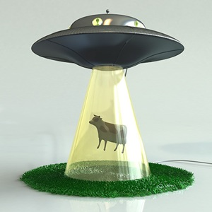 Images Abductionlamp Cow
