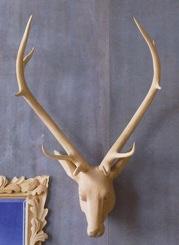 Images Roost 06 Roost Deerhead