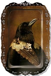 Birdtrayyryry2