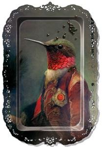 Birdtrayyyy