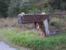 texas-mailbox
