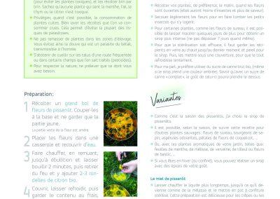 Les sirops de plantes sauvages