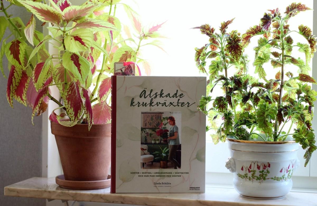 Älskade krukväxter av Linda Schilén