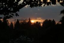 Sonnenuntergang im BOKU-Gemeinschaftsgarten