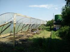 Bilder vom erweiterten Tomatenhaus