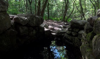 Haiku #2142 : Fontaine de Barenton