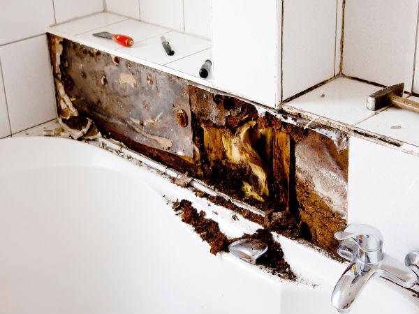 how to handle mildew in bathroom during monsoon - boldsky