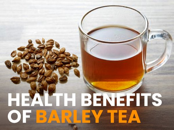 xhealthbenefitsfobarleytea 1601450012.jpg.pagespeed.ic.6CyN4QSBIR