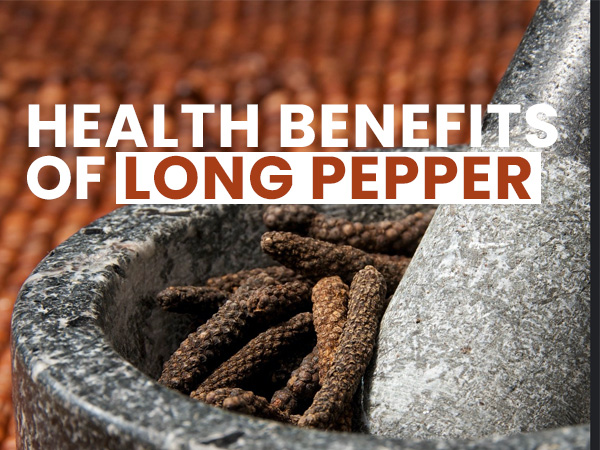 Health Benefits Of Long Pepper (Pippali)