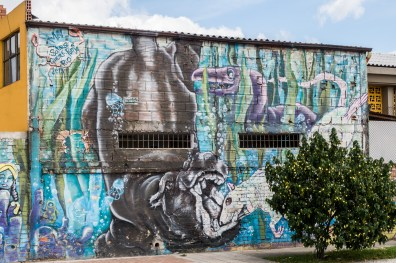 Bogota Colombia Grafitti Photography(24) May 15