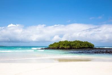 Galapagos - Tortuga Bay Beach