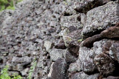 Galapagos - Wall of Tears (8 of 42) June 15