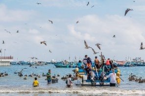 Puerto Lopez - Fish Market (11 of 40) May 15