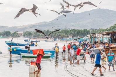 Puerto Lopez - Fish Market (15 of 40) May 15