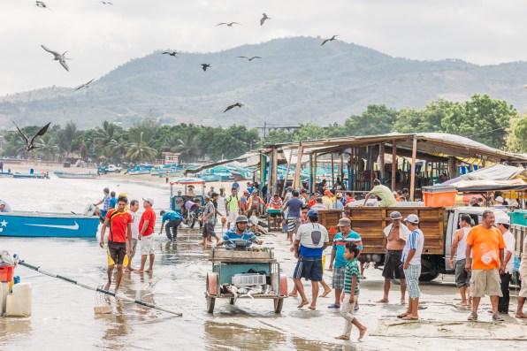 Puerto Lopez - Fish Market (16 of 40) May 15