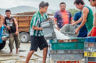 Puerto Lopez - Fish Market (21 of 40) May 15
