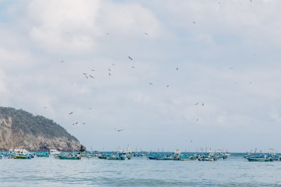 Puerto Lopez - Fish Market (3 of 40) May 15