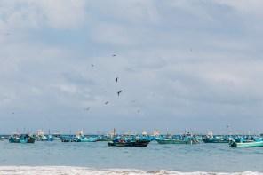 Puerto Lopez - Fish Market (7 of 40) May 15