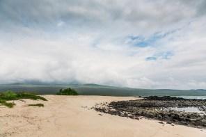 Galapagos - Leon Dormino (Kicker Rock) (55 of 61) June 15